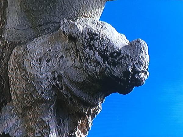 Belem-Tower-Rhinoceros