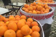 Obidos-Oranges