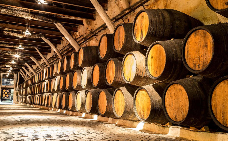 יקבים ויין בפורטוגל